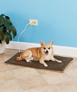 electric pet mat