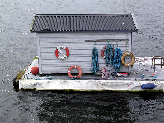 Shed-on-water