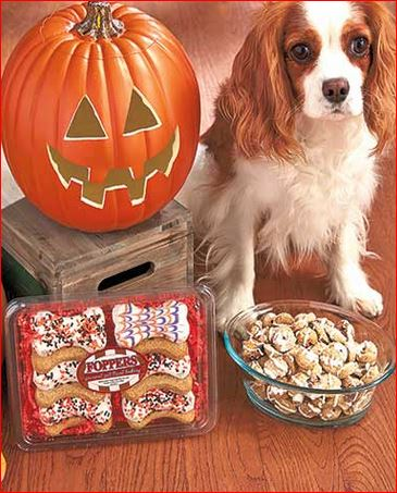 halloween-dog-treats