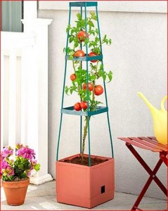 grow-tower