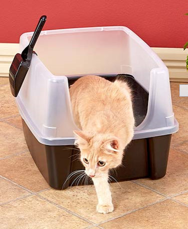 open-tox-litter-box-with-shield