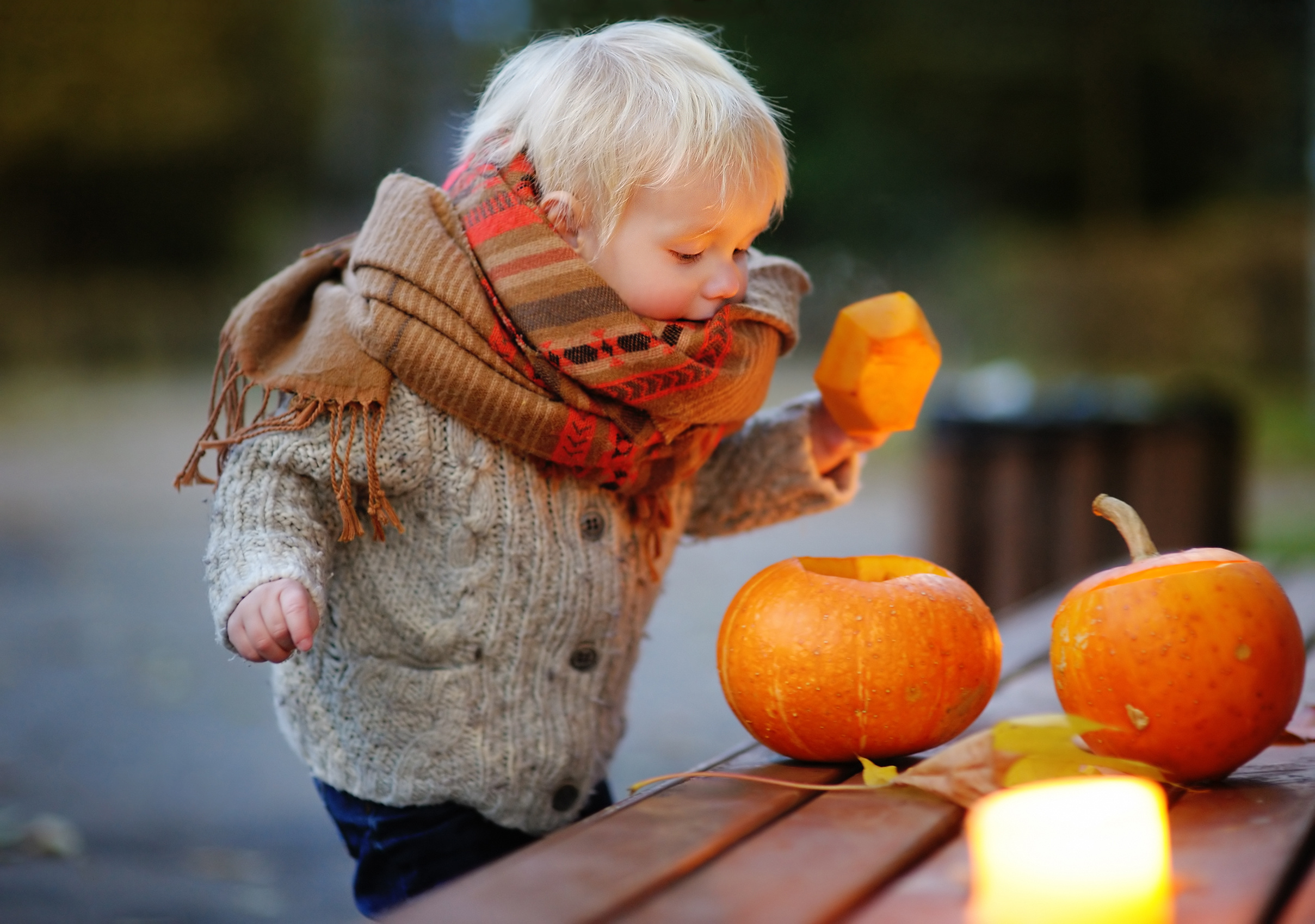 toddler-playing-with-halloween-pumpkins