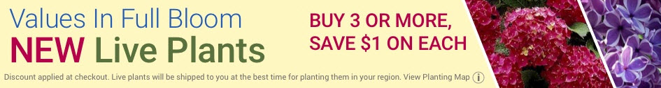 New Live Plants - Buy 3 or More, Save $1 On Each