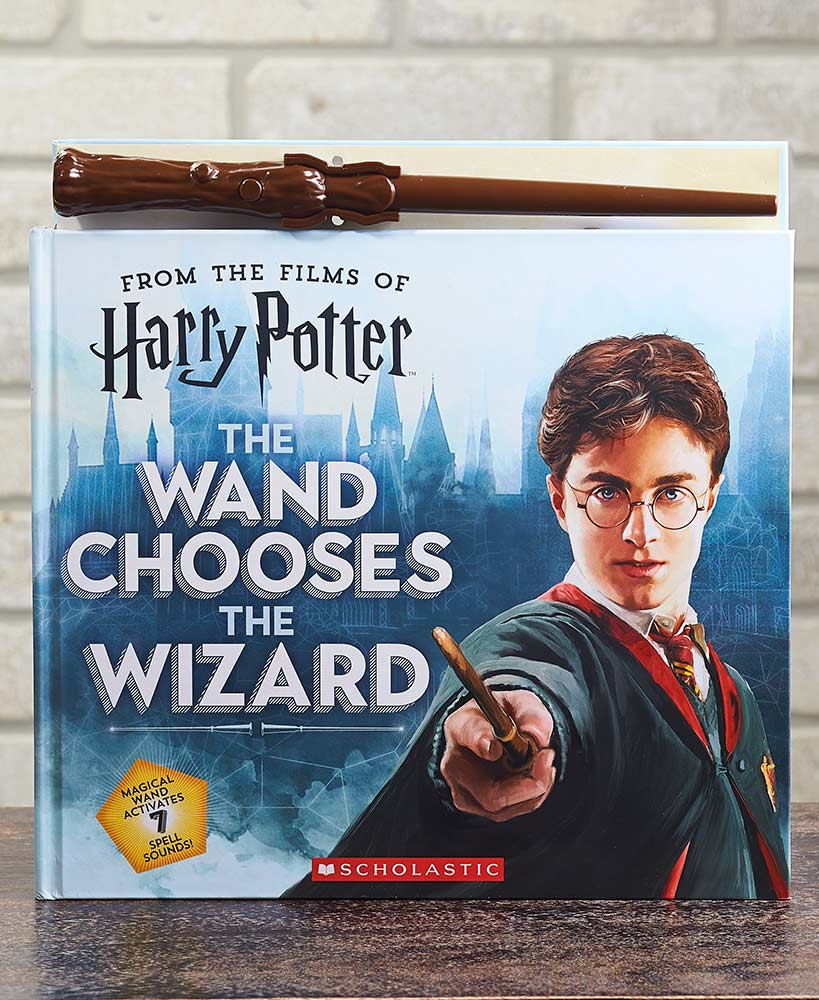 Harry Potter The Wand Chooses The Wizard Book