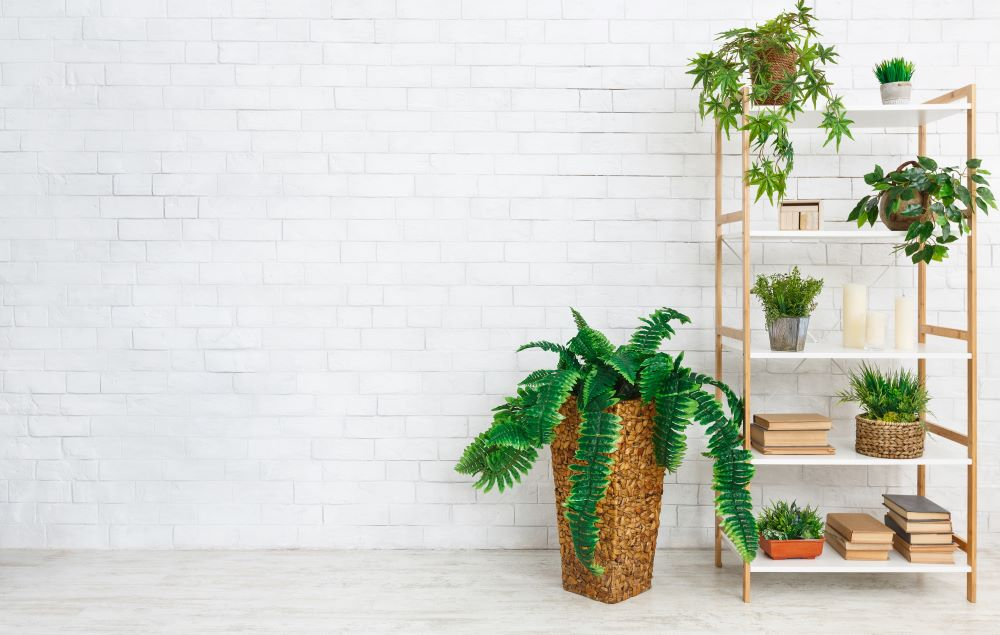 How To Decorate Shelves - Use Plants