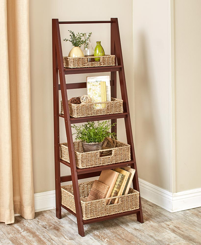 Living room organization ideas - Classic Ladder Shelves