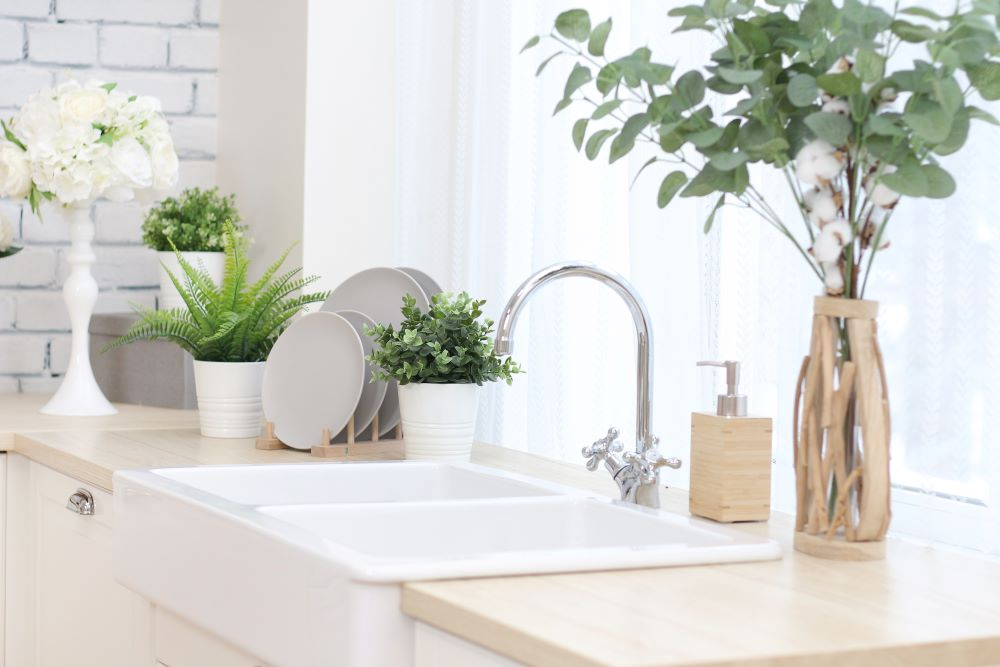Kitchen With Plants On Counters