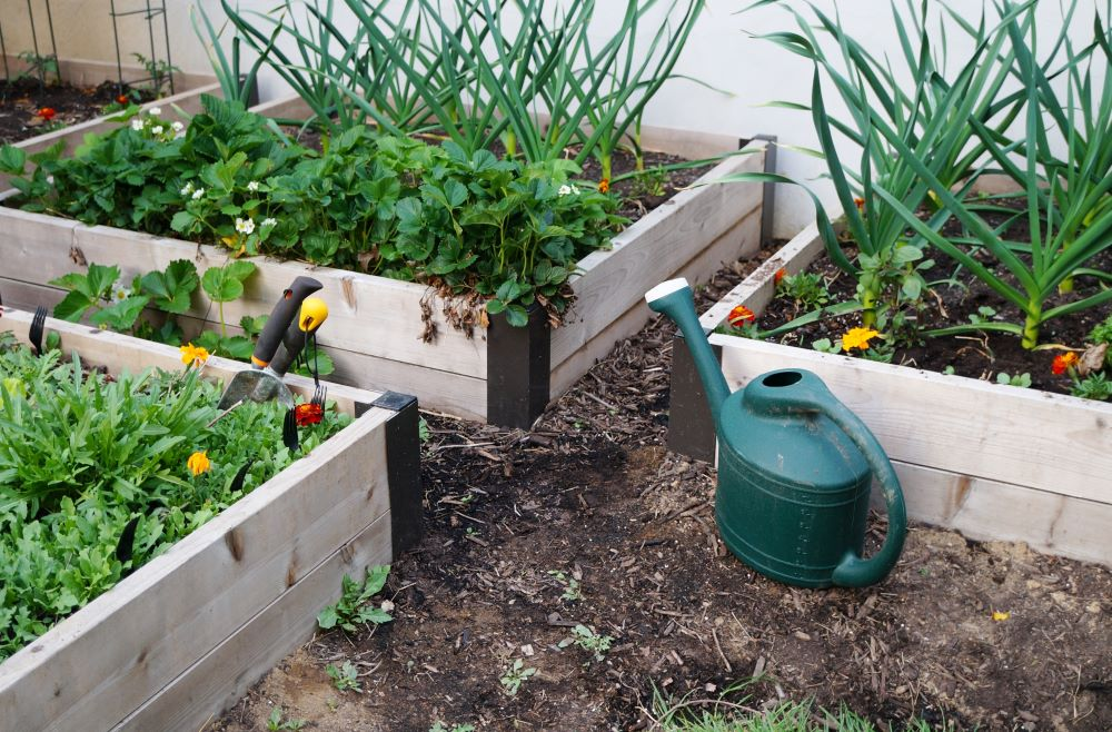 Raised Bed Gardening Tips - Choosing An Area For Your Garden Bed