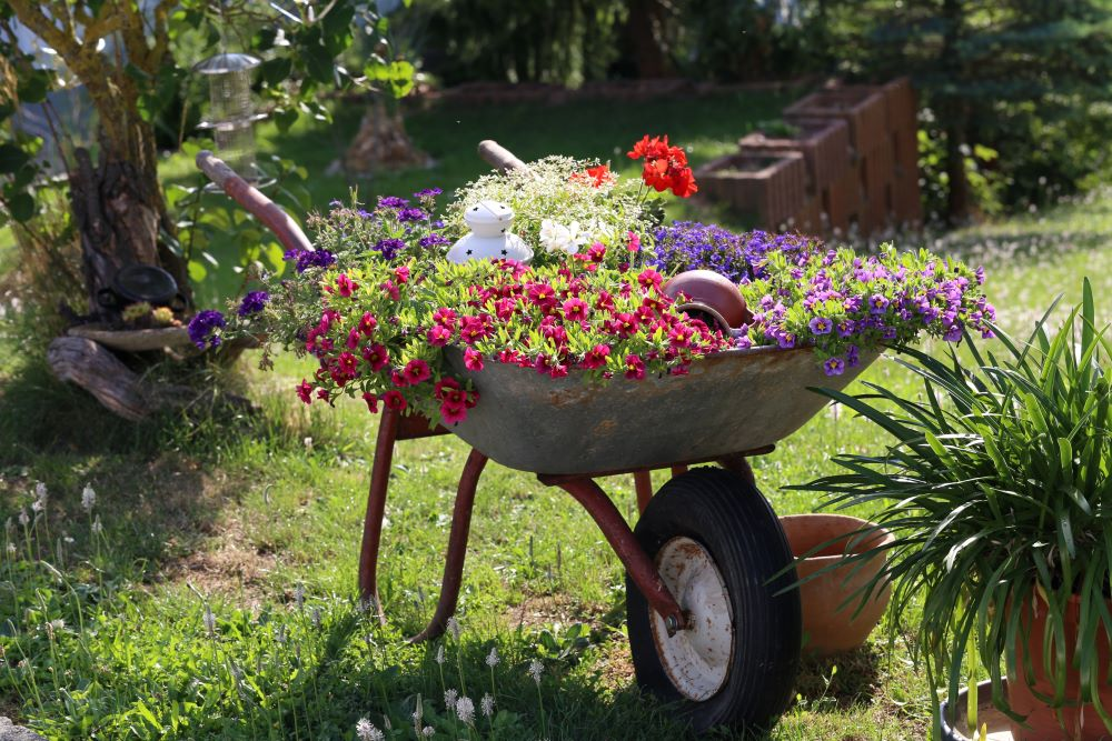 DIY Upcycled Wheelbarrow Planter