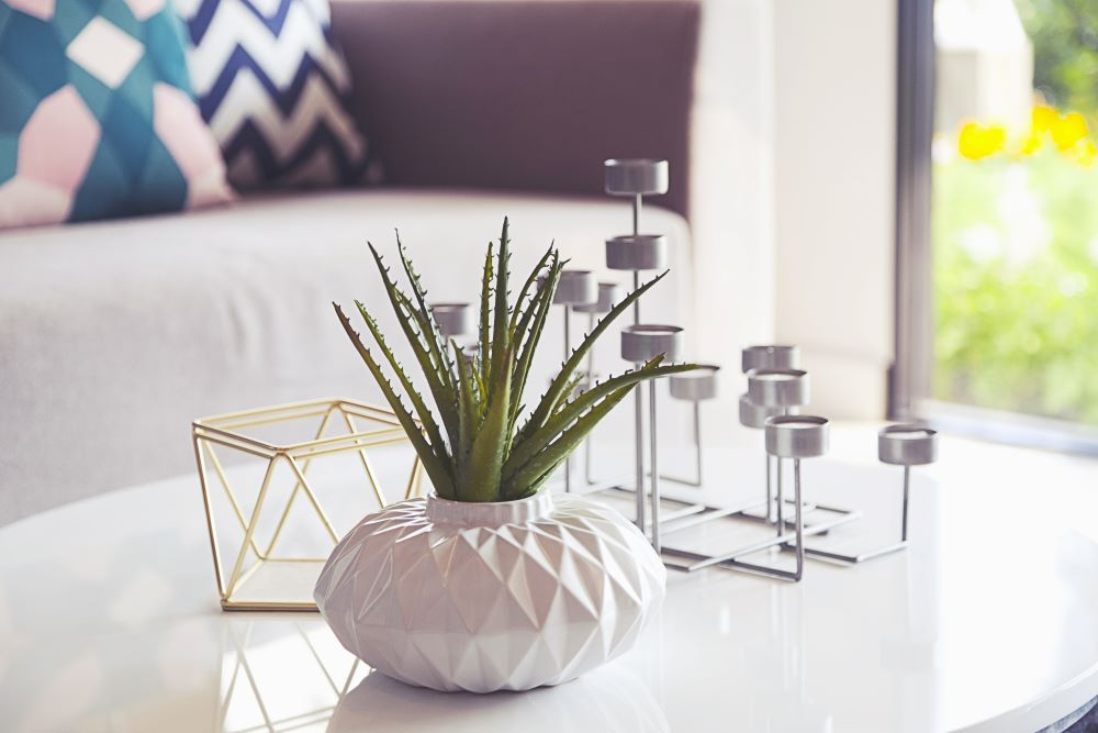 Make Your Space Look Elegant For Less - decorative accent display