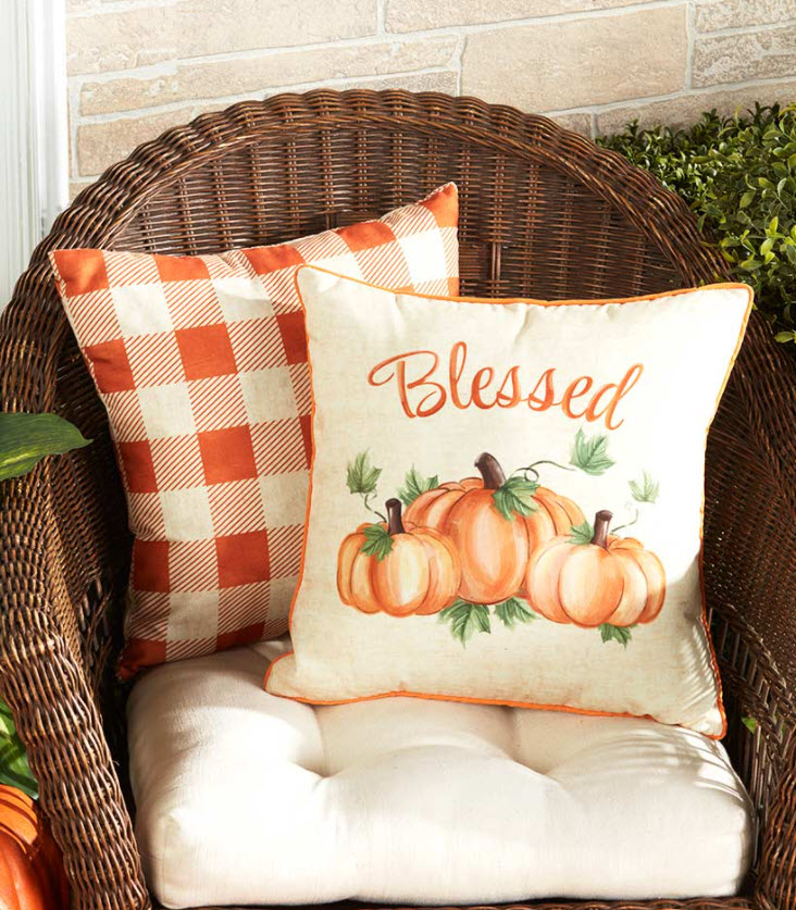 Sets of 2 Indoor/Outdoor Pillows